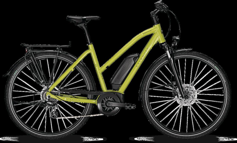 Kalkhoff ENDEAVOUR 1.B MOVE Dame 2021 - Grøn  »  Bike Size: S/45cm